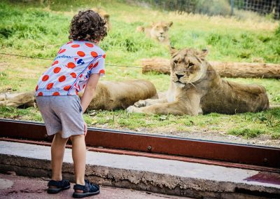 SurroundingBenalmadena_animal Park